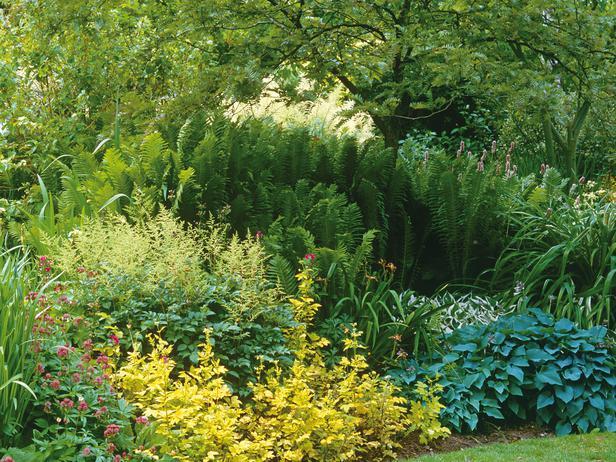 RX-DK-GDN08705_summer-garden_s4x3_lg